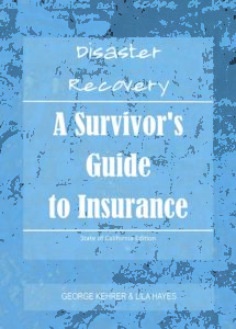 Disaster Recovery: A Survivors Guide to Insurance Cover